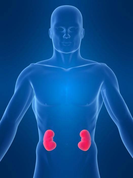 Воспаление почек лечение таблетки