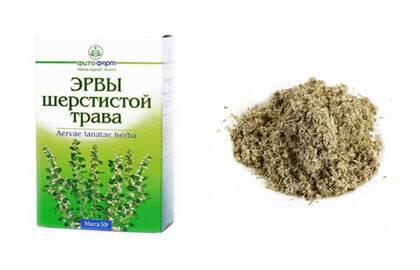 Внешний вид сухой и измельченной травы эрвы шерстистой