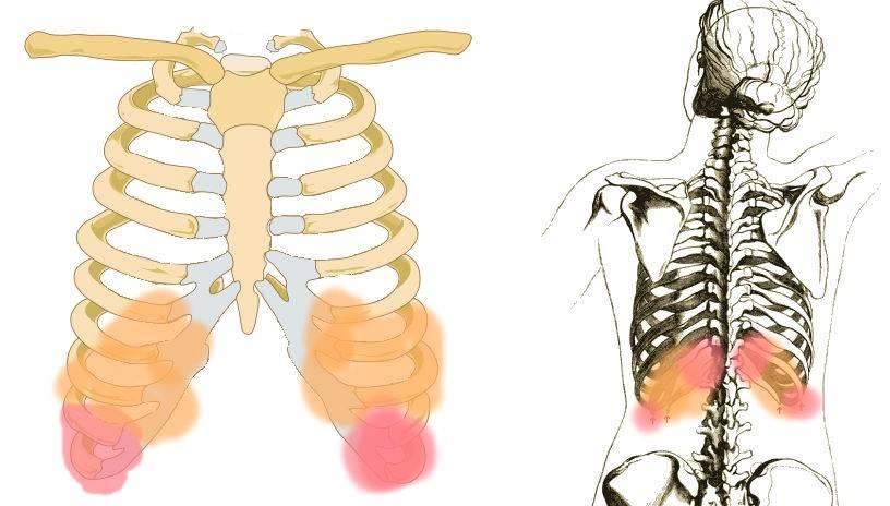 Очень болит спина в области почек