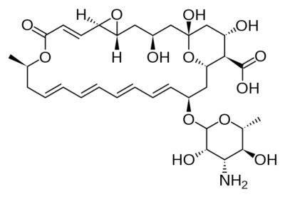 Нистатин формула