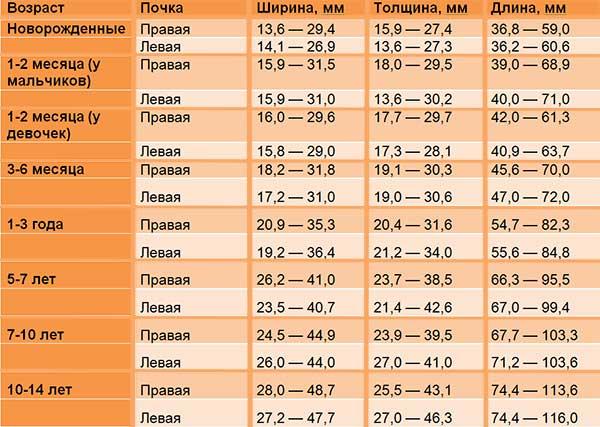 Таблица с показателями нормальных размеров правой и левой почек у детей разных возрастов