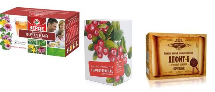 Почечный чай полезные свойства и противопоказания — Полезные свойства