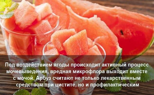 Употребление арбуза при цистите