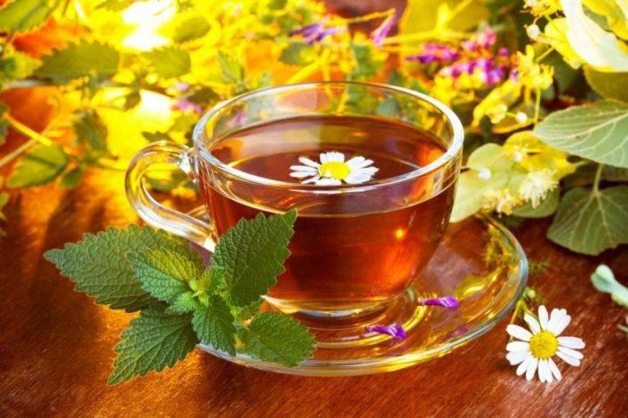 Урологический чай при камнях в почках
