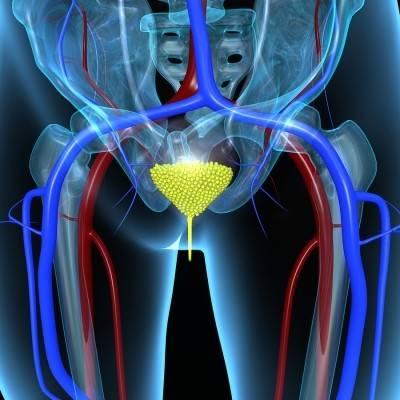 Утолщение стенок мочевого пузыря - симптом многих заболеваний